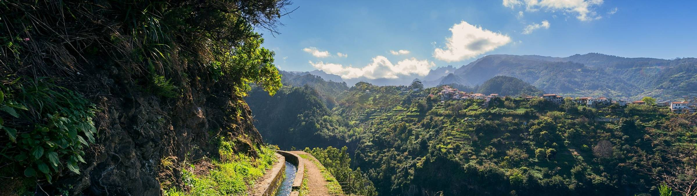 @Francisco Correia And Visit Madeira (5)