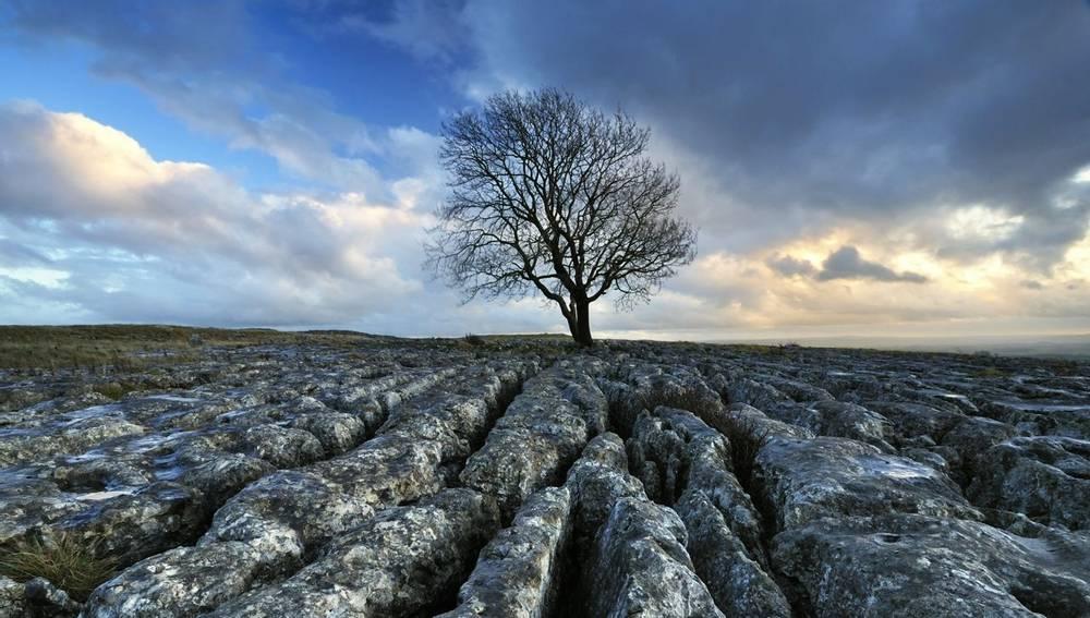 Limestone Paving Yorkshire