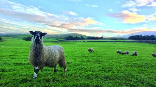 3-Night Southern Yorkshire Dales Discovery Tour