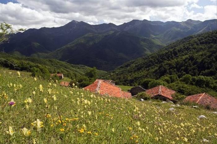 mountain village (Lee Morgan)
