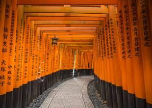 Japan Kyoto Fushimi Inari-Taisha 1000 Torii Gates - IMG5775 Lg RGB.jpg