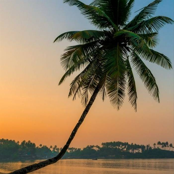 14 Day - Goa - Itinerary Desktop.jpg