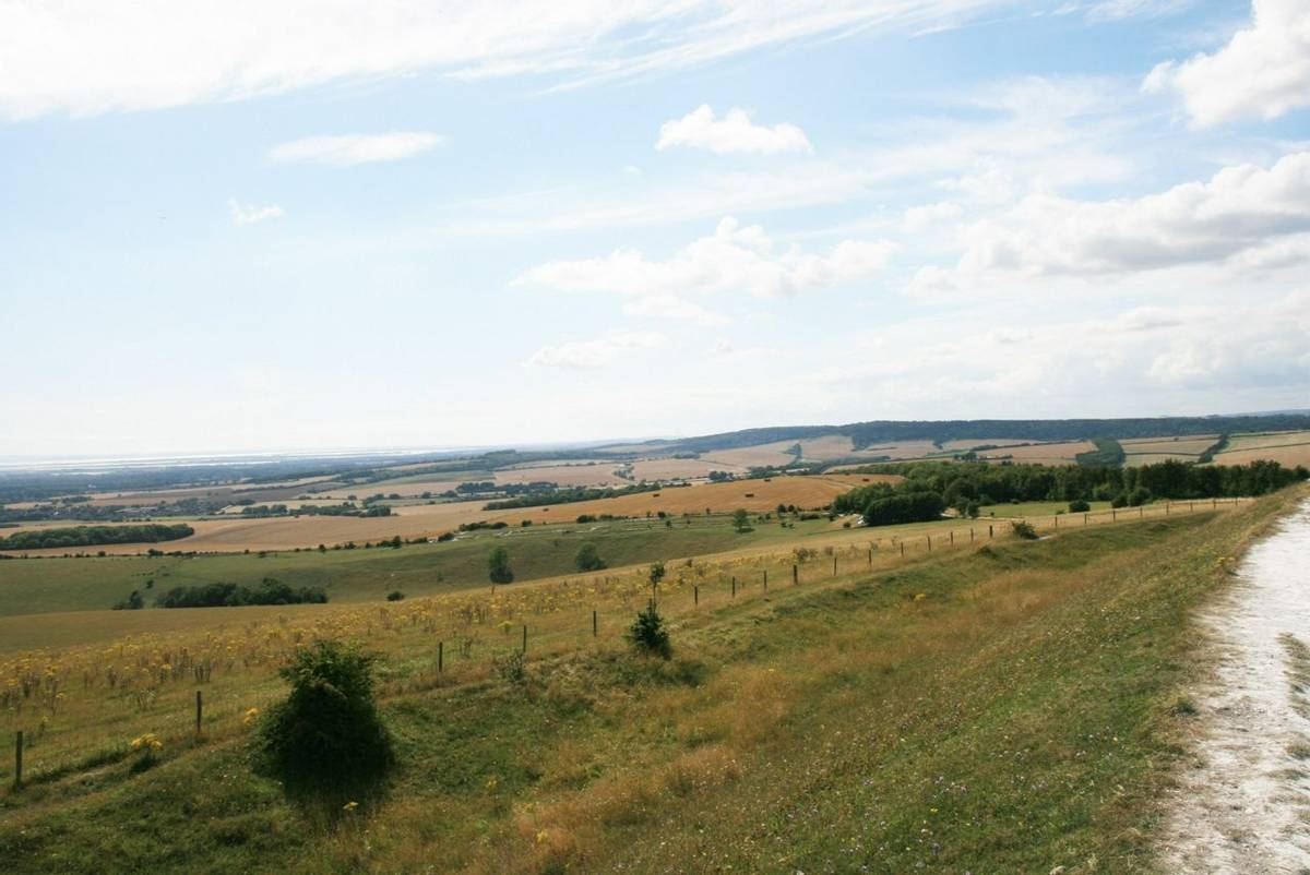 View from The Trundle near Goodwood.JPG