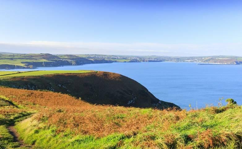 Coast Path at Dinas Head nr Fishguard Pembrokeshire Wales
