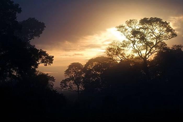 Pouso Alegre dawn (Dani Free)