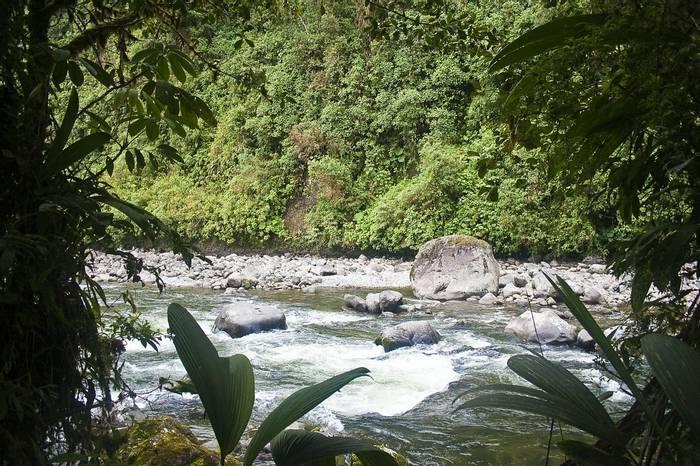 Rio Cosanga, San Isidro