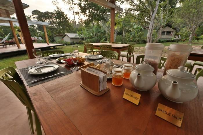 Breakfast (Fernando Alba, Canopy Family)