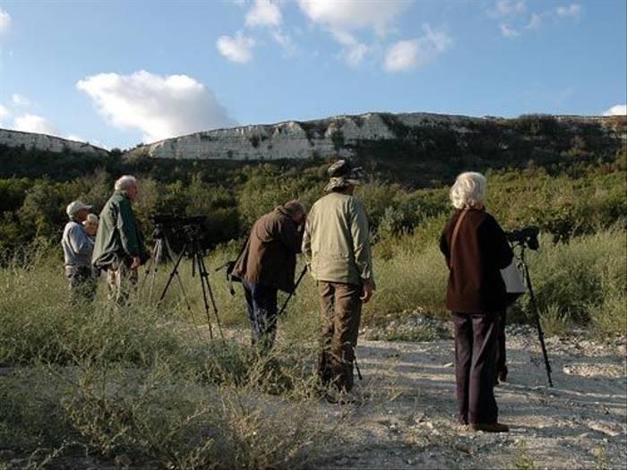 Eagle Owl watching (David Morris)