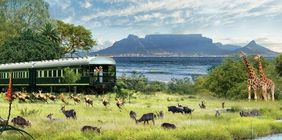 The Wonders of South Africa & Rovos Rail Journey