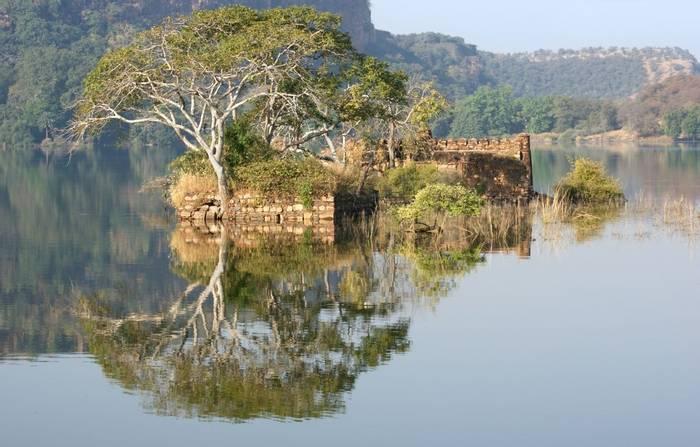Lake at Ranthambore National Park