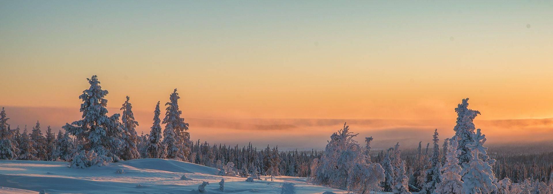 Harriniva Credit Antti Pietikäinen