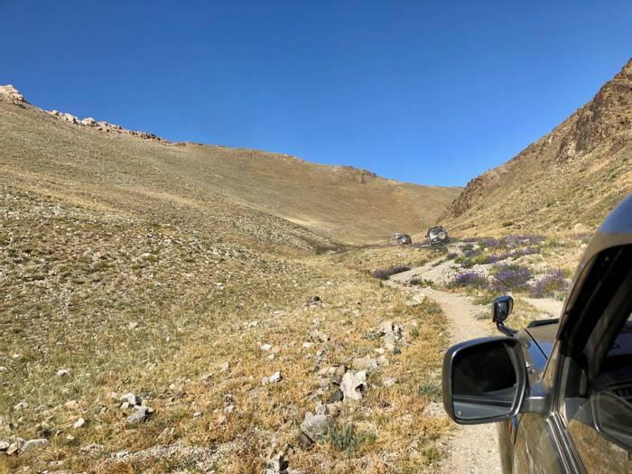 Driving to Leopard Habitat (Adam Dudley).jpg