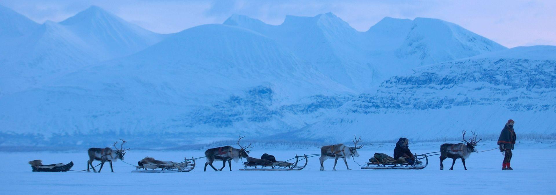 Staffan Widstrand and Visit Sweden -sami_lapland Northern Norway.jpg