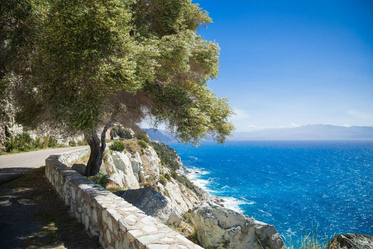 France - Corsica - AdobeStock_83615156.jpeg