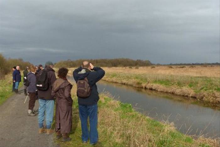 Naturetrek group birdwatching at Shapwick