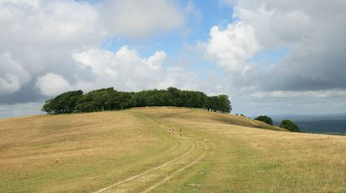 7-Night South Downs Tread Lightly Guided Walking Holiday