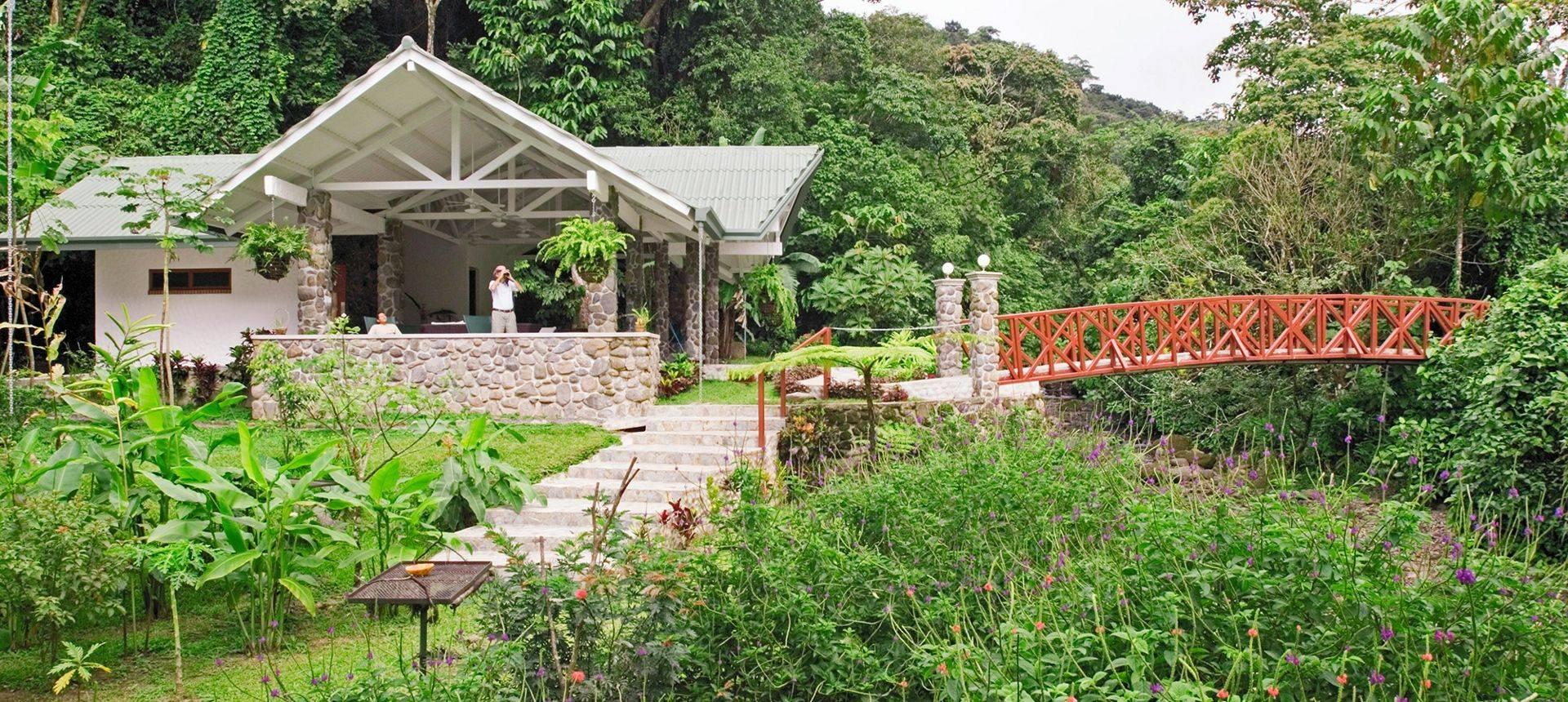 Canopy Lodge David Tipling