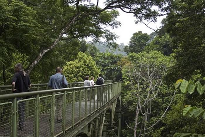 Sepilok Rainforest Discover Centre (Dani Free)