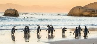 Itinerary Desktop 5 - Cape Town.jpg