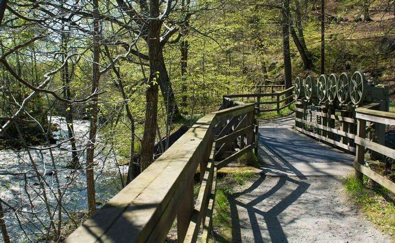 Sweden - Jonsered Forest Walk_AdobeStock_238717776.jpeg