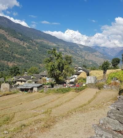 Trail near Tirkhedunga (1,540m)