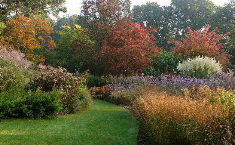 Dorset Coast - Dorset Gardens Tour -Knoll Gardens - autumn5634.jpg