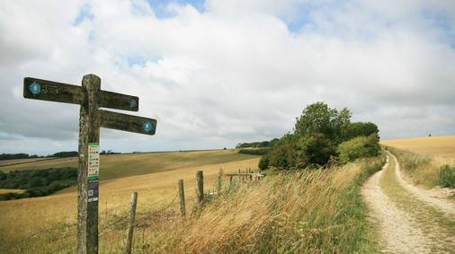 3-Night South Downs Tread Lightly Guided Walking Holiday