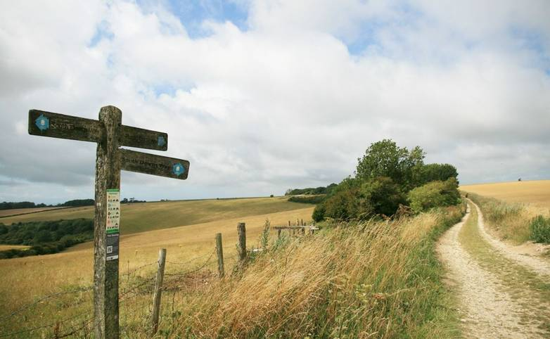 South Downs Way Sign near Chanctonbury Ring.JPG