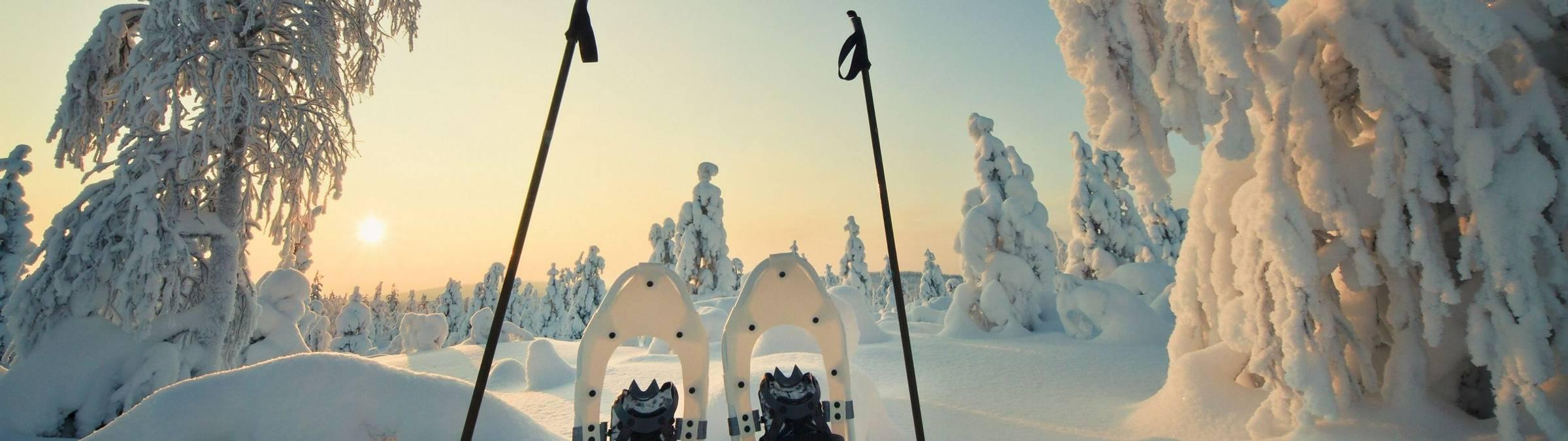-vastavalo- petri jauhiainen and visit finland.jpg