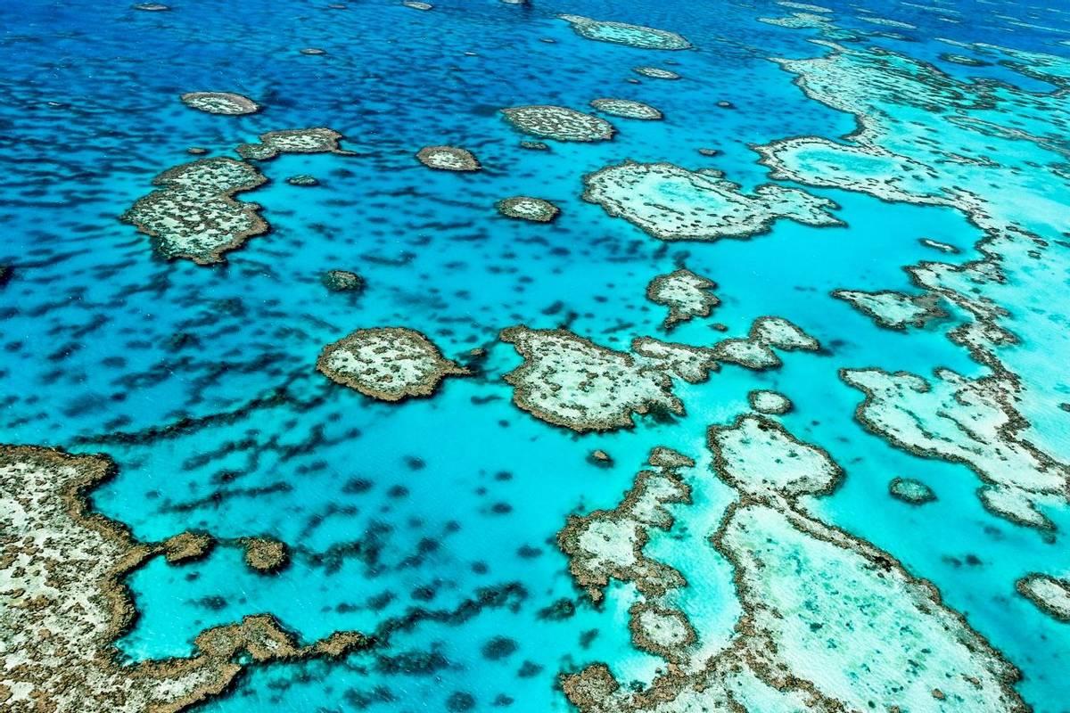Great Barrier Reef. Shutterstock 134885012