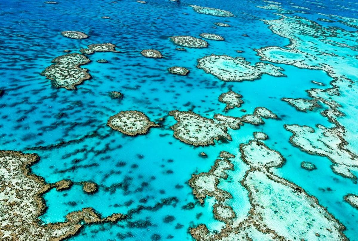 Great Barrier Reef. Shutterstock 134885012