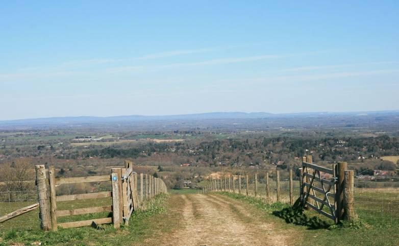 Path down Barnsfarm Hill towards Washington village.JPG