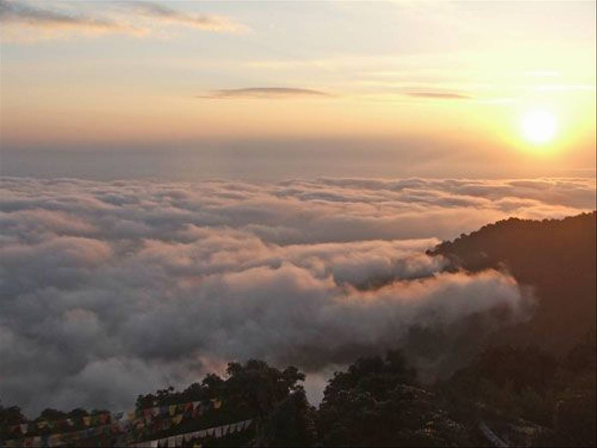 Sunrise (Rachel Anderson)