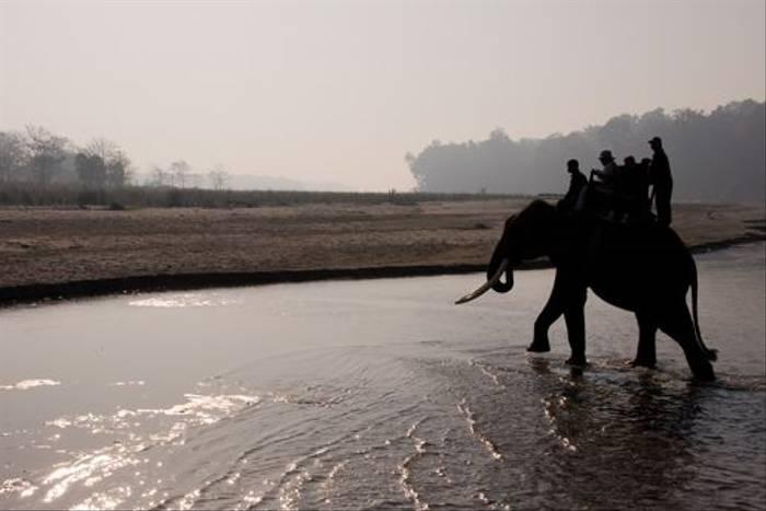 Elephant safari, Chitwan (Paul Stanbury)