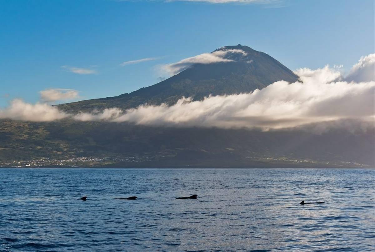 Pico Island Azores Shutterstock 100839673