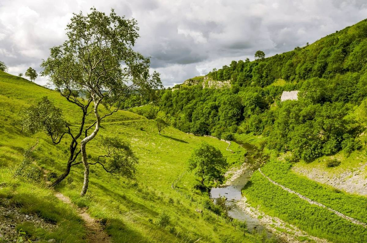 A view of Smardale Gill, Cumbria.