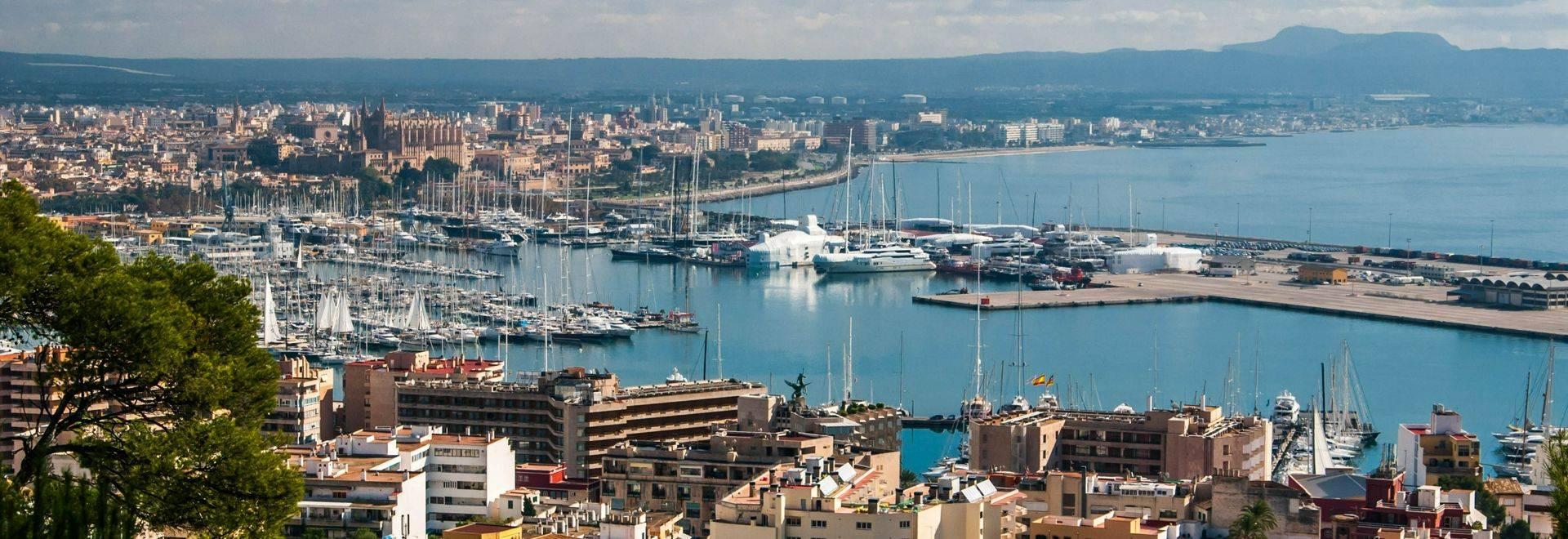 dreamstime_l_29627265 Palma de Majorca.jpg