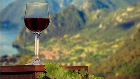Day 11   Italy   Lake Garda   Wine