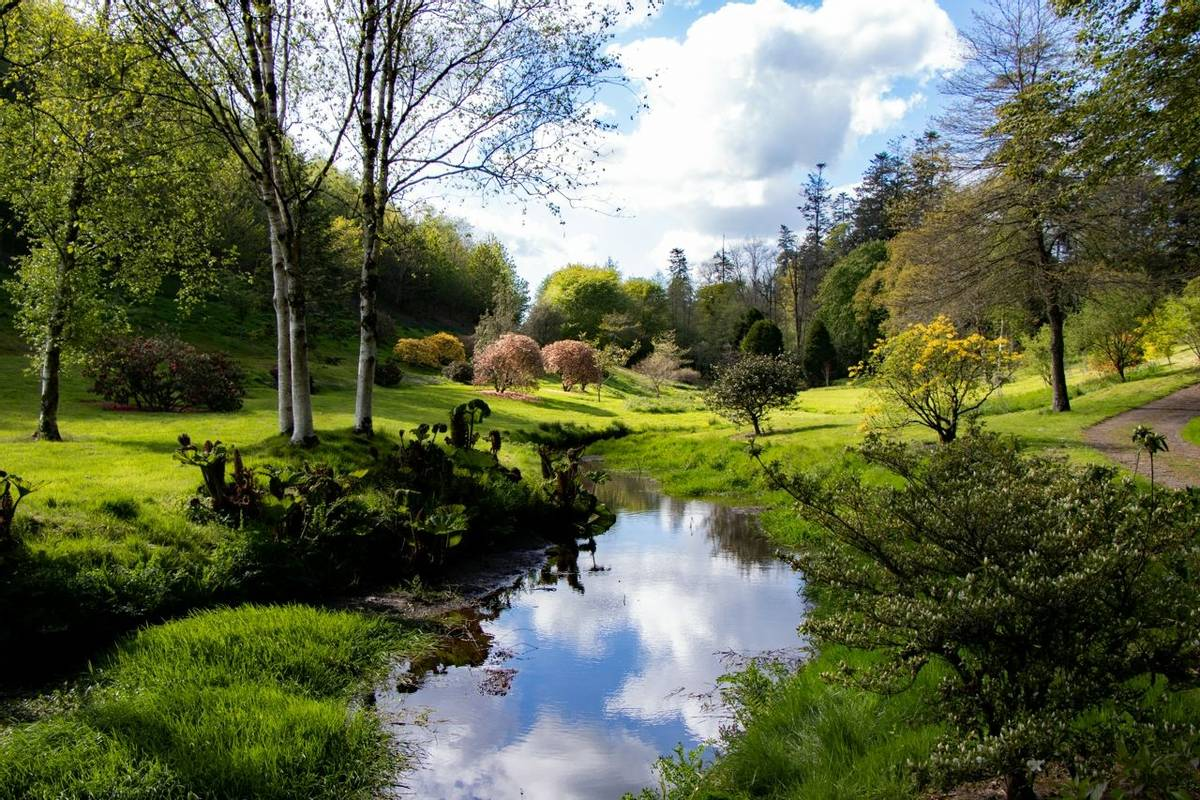 Exmoor Somerset & Devon Garden Tours -  Castle Hill -  IMG_5845_edited-1.jpg