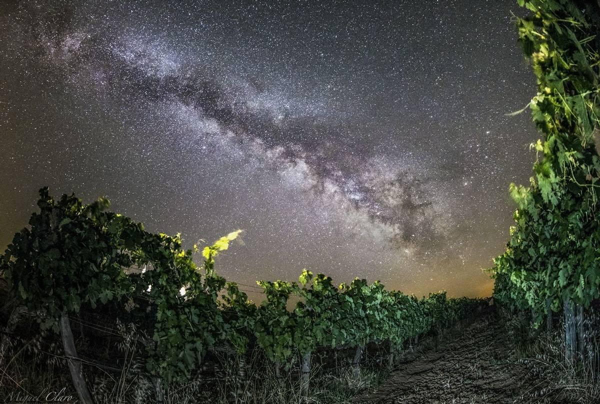 MilkyWay and Vineyards © Miguel Claro  Dark Sky® Alqueva.jpg