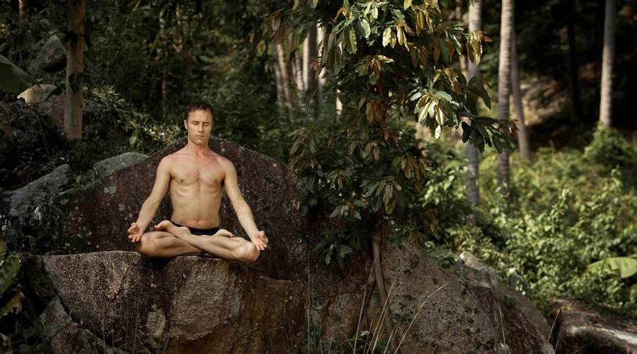 Meditation in Thai Jungle