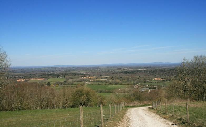 Path down Barnsfarm Hill South Downs.JPG