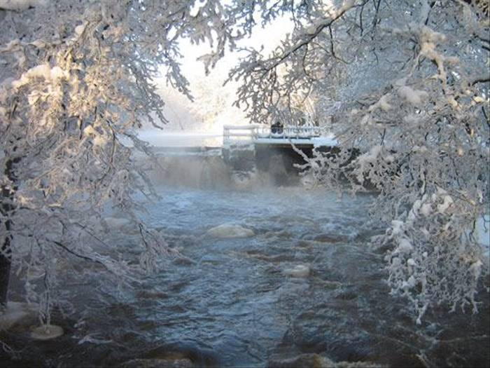 Forsby frost (Daniel Green)