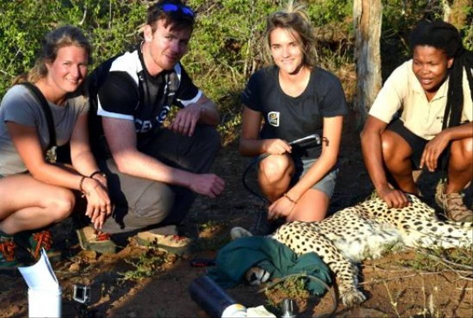 Volunteer-Projects-wildlife