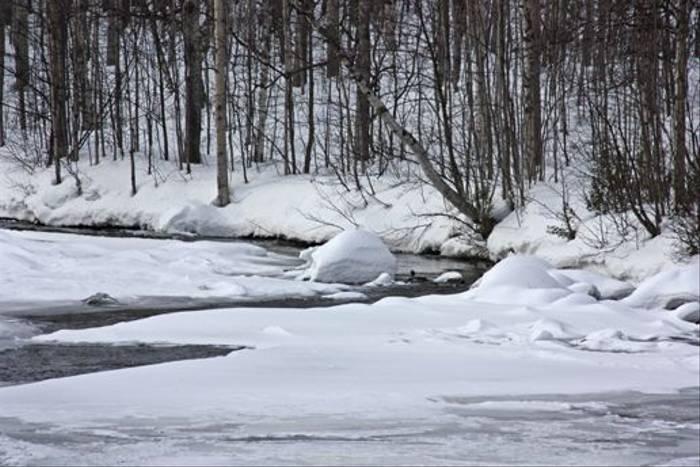 River winding through the snow (Jennifer Horn)