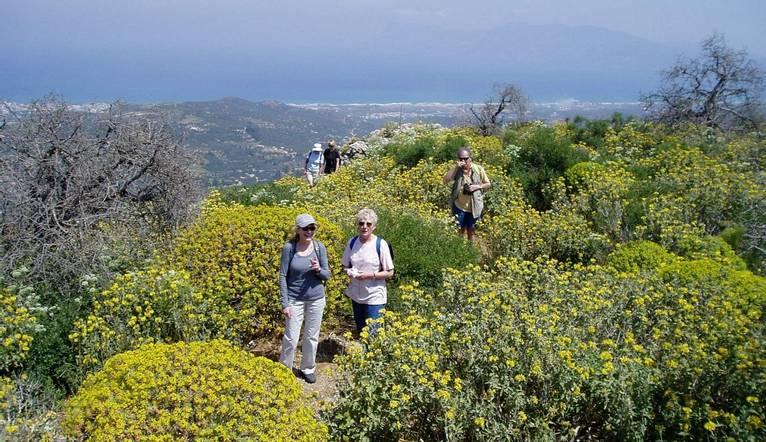 Walking In Crete   Walking 2