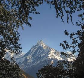 Trek the Annapurna circuit