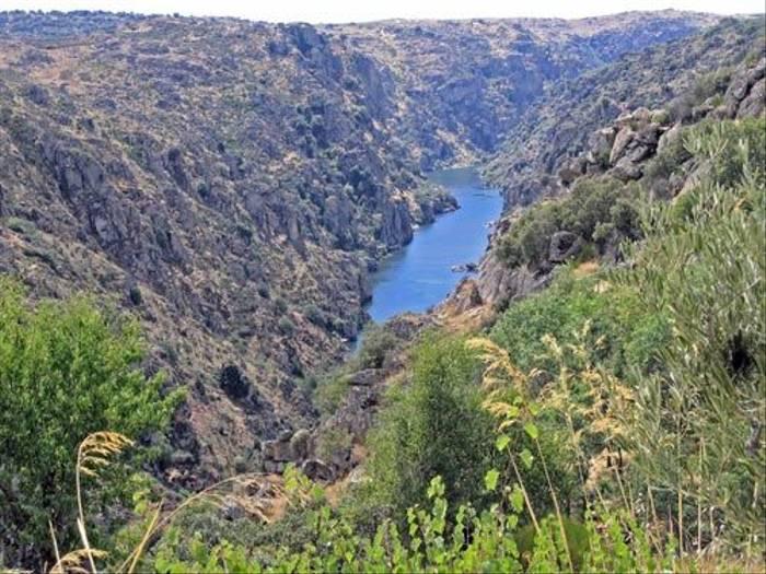 Douro Gorge (Peter Dunn)