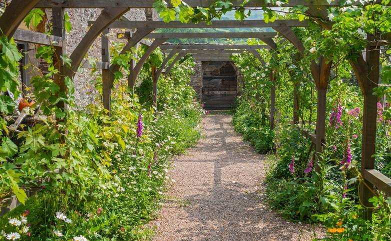 View along the rose arbour from the kitchen doorTretower CourtCadw SitesSAMN: BR117NGR: SO185211PowysMidHouses - Dome…