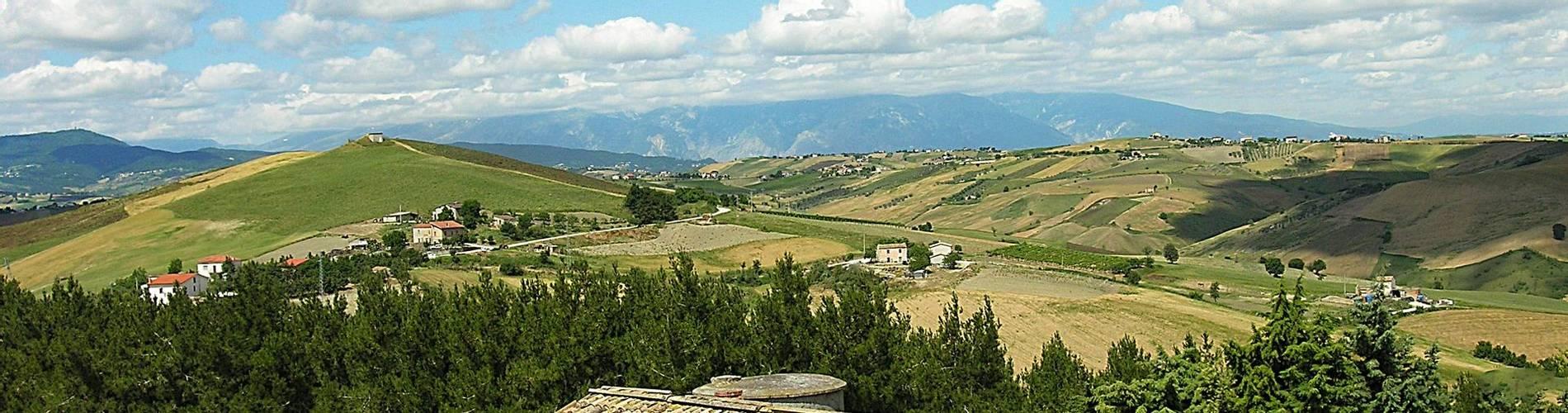 Fattoria Dell'Uliveto, Abruzzo, Italy (3).jpg